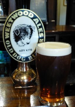 Weetwood Old Dog